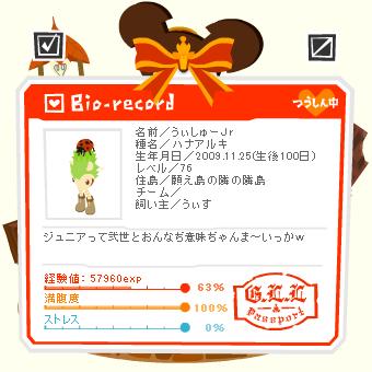 うぃしゅーJr100日.png