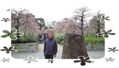 農業公園梅まつり1.png